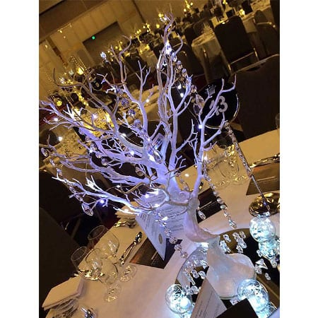 Fire and Ice Theme centrepiece hq for hire